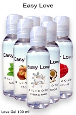 Love Gel parfumé 100 ml : Lubrifiant intime silicone haute qualité made in France, 7 parfums au choix du bubble gum à la framboise.
